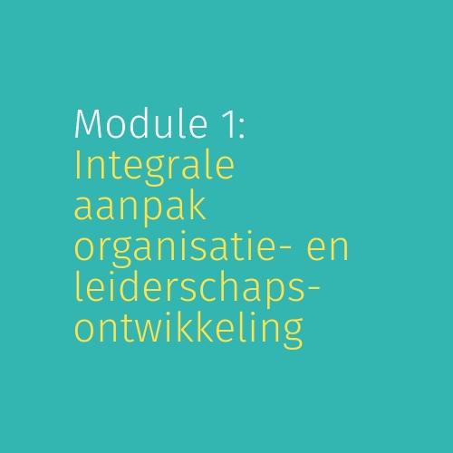 Module 1: Integrale aanpak organisatie- en leiderschapsontwikkeling