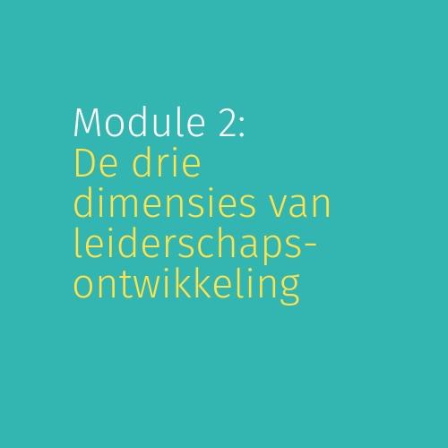 Module 2: De drie dimensies van leiderschapsontwikkeling
