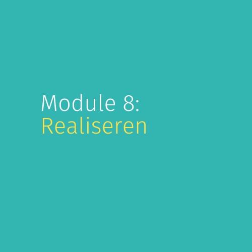 Module 8: Realiseren