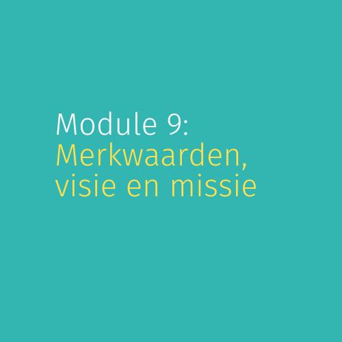 Module 9: Merkwaarden, visie en missie