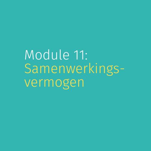Module 11: Samenwerkingsvermogen