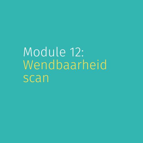 Module 12: Wendbaarheid scan
